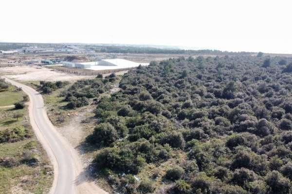 RAZVITAK PODUZETNIŠTVA U SV. FILIP I JAKOVU: Uskoro kreće natječaj za kupnju zemljišta u Poslovnoj zoni